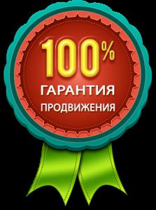 100% гарантия продвижения сайта (эффективная раскрутка)