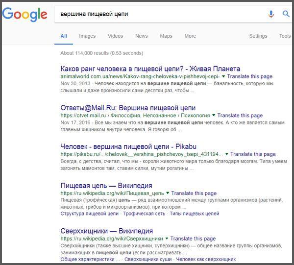 Пример простого запроса в поиске Google