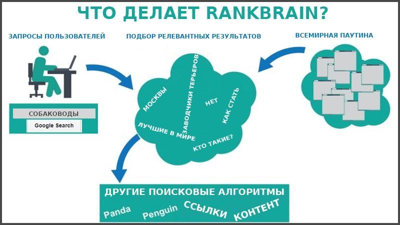 Принцип работы Google RankBrain
